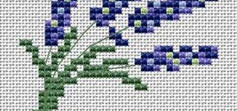 Levandule – předloha pro křížkové vyšívání